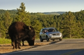 Custer Area Attractions